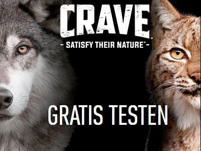 """Schwarzer Hintergrund, rechts am Bildrand ein halber Katzenkopf, links ein haber Hundekopf, mittig oben das CRAVE Logo, darunter Schrift: """"Gratis testen"""""""""""