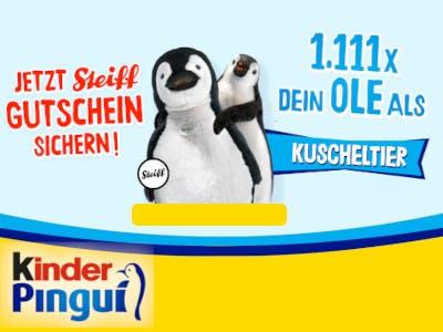 Bild oben hellblau, unten gelb, unten links das Kinder Pingui Logo, aben die Aktionsbeschreibung und Ole als Steiff Plüschtier