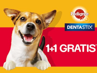 Pedigree Dentastix 1 + 1 gratis Aktion