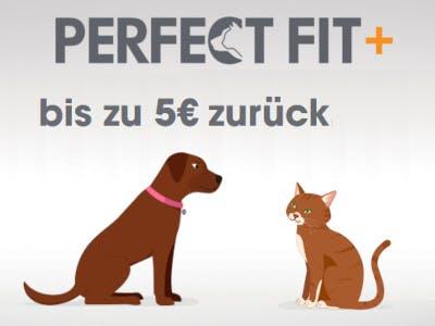 Graues Bild mit Hund und katze unten im Bild, oben das Perfect Fit Logo / der Schriftzug, darunter der Aktionsslogan