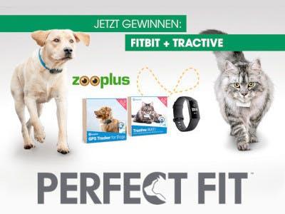 Zooplus Perfect Fit - Gewinnspiel