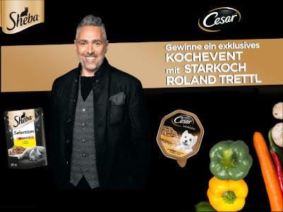 Sheba Cesar Kochevent Gewinnspiel
