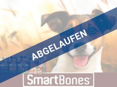 Hund rechts im Bild, unten ein dunkelroter Balken mit dem Smartbones-Logo, links unten im Bild Produktpackungen