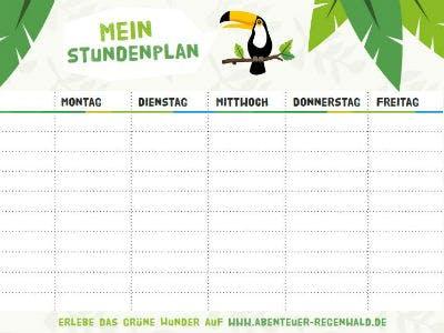 Kostenloser Regenwald-Stundenplan
