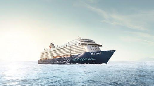 Ein Kreuzfahrtschiff auf dem Meer.