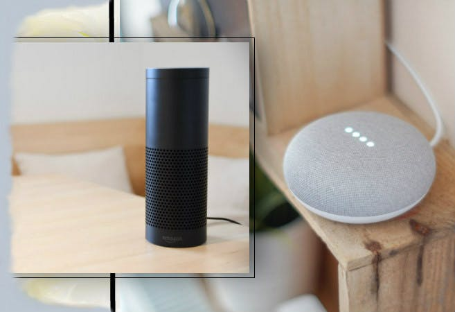 Sprachassistenten: Amazon Echon und Google Home