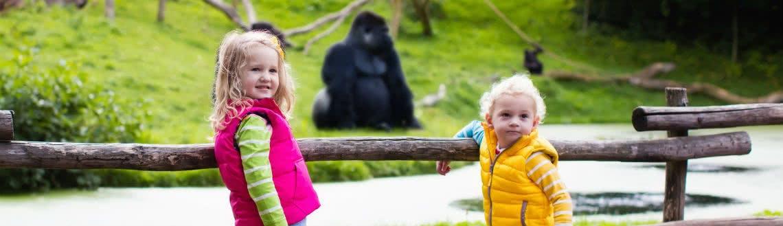 Günstig in den Zoo | SPARWELT