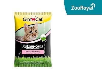 Ein Festschmaus im Garten: GimCat Katzengras
