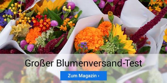 Muttertag 2020: Großer Blumenversand-Test