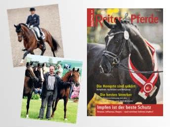 Reiter und Pferde in Westfalen gratis