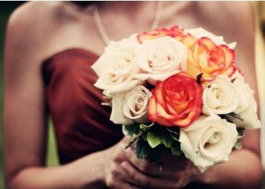 Top Preise für Pflanzen und Blumen mit einem entsprechenden Gutschein