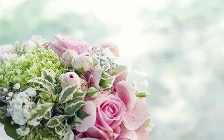 Mit einem Blume Ideal Gutschein sparen
