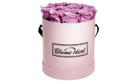 Mit einem Blume Ideal-Gutschein Rosenboxen günstig kaufen