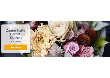 Informiere dich über Aktionsangebote bei EuroFlorist und versende deinen Blumengrüße günstiger