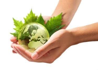 Die heilende Wirkung der Pflanzen von Mutter Erde ist verblüffend