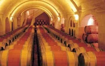 Zahlreiche edle Tropfen warten im Lager von Silkes Weinkeller auf deine Bestellung.