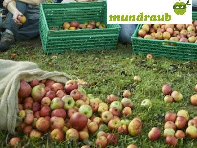 Kostenlose Früchte, Kräuter und Nüsse in eurer Nähe