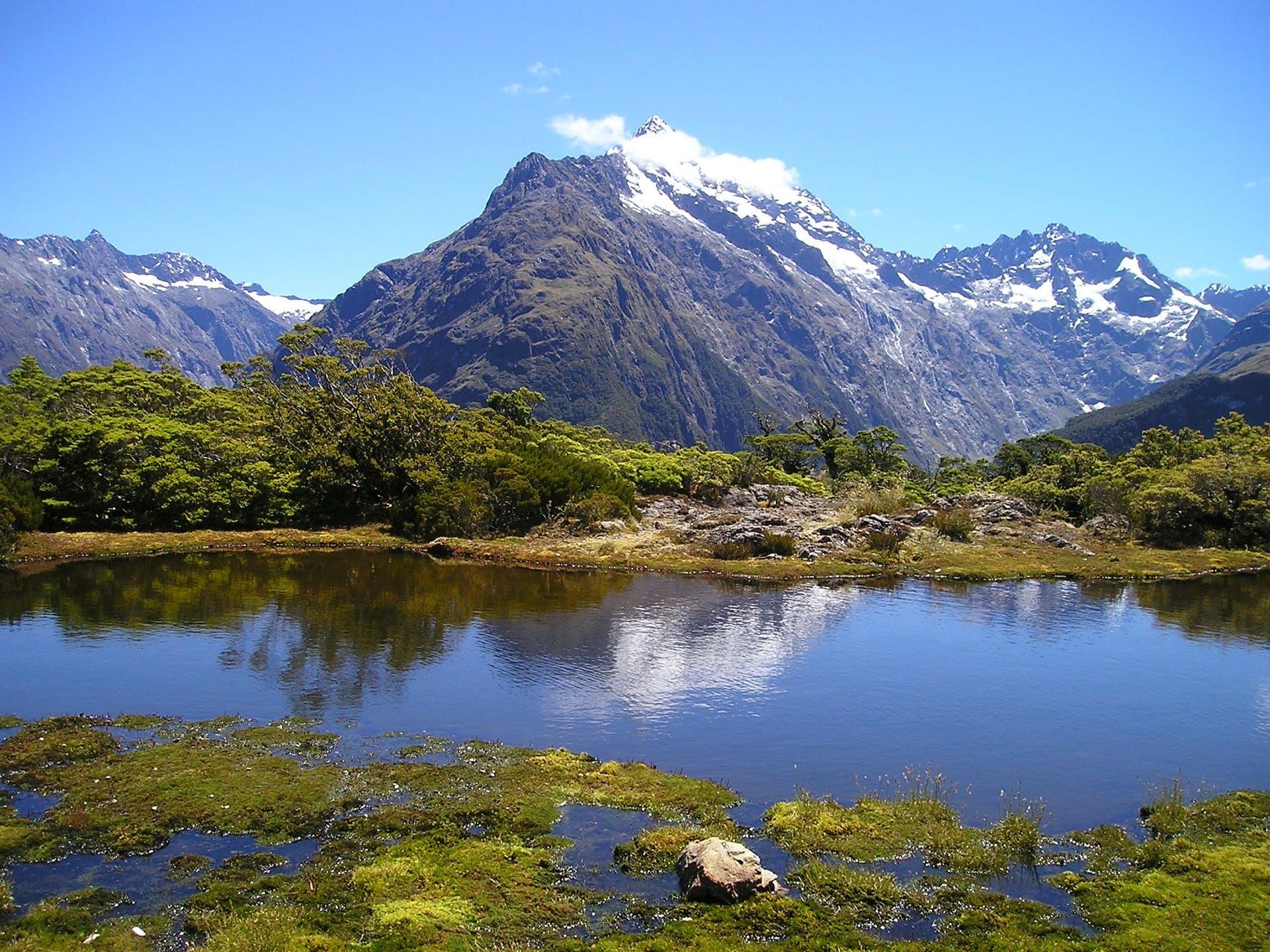 Eine Reise nach Neuseeland oder 10.000€ in bar?