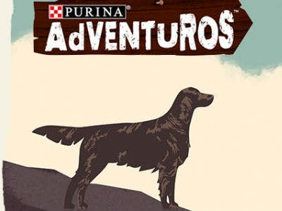 Gratis Hundesnacks von Purina AdVENTUROS