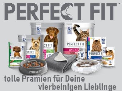 NEU! Exklusive Prämie für Hund und Katze
